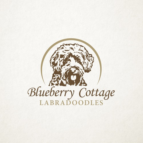 Blueberry Cottage Labradoodles