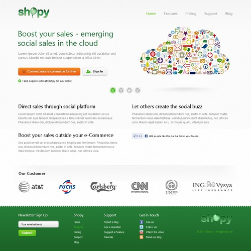 Shopy needs a new website design
