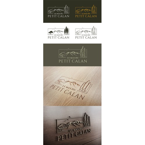 Create a logo for a luxury rental home in Provence / South of France