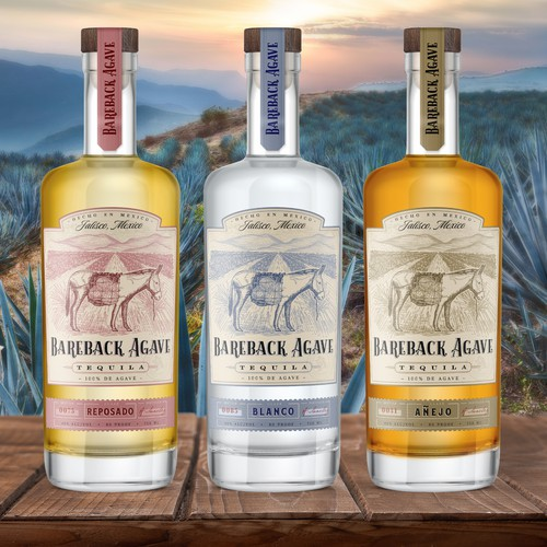 Tequila label design and hand drawn illustration for Bareback Agave brand