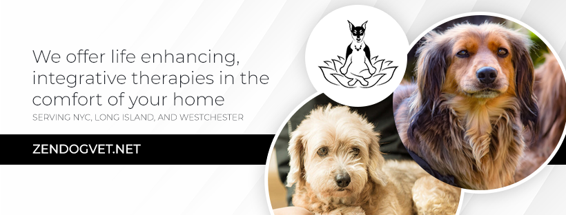 Facebook cover for mobile veterinarian treating pets with acupuncture and physical rehabilitation