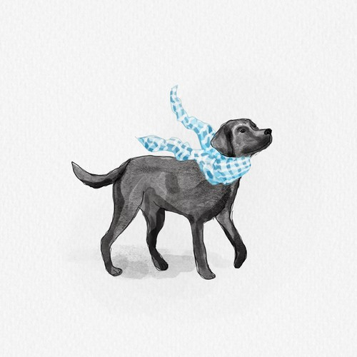 Watercolor illustration for fashion lifestyle pet brand
