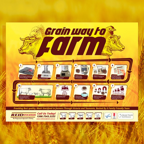 Grain Flow Infographic