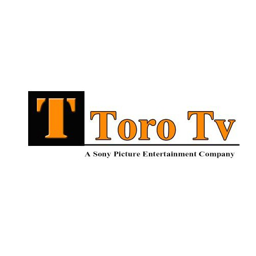 Create all brand new logo for a Tv production company