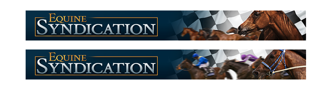 Help Equine Syndication with a new banner ad