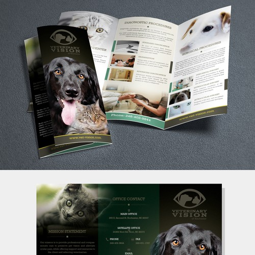 Brochure to help Veterinary Vision help save pet vision