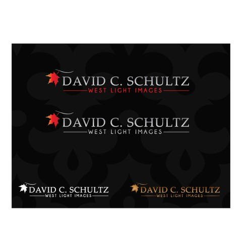 David C. Schultz