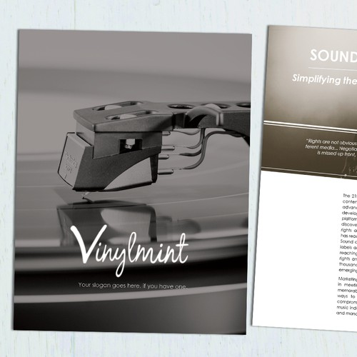 Professional Brochure for Vinylmint