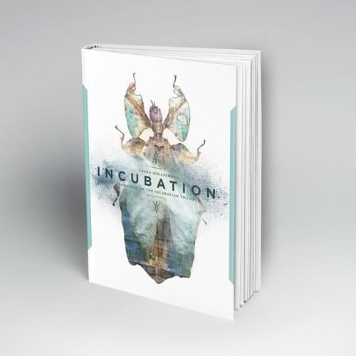 First Sketch for Incubation Book Series