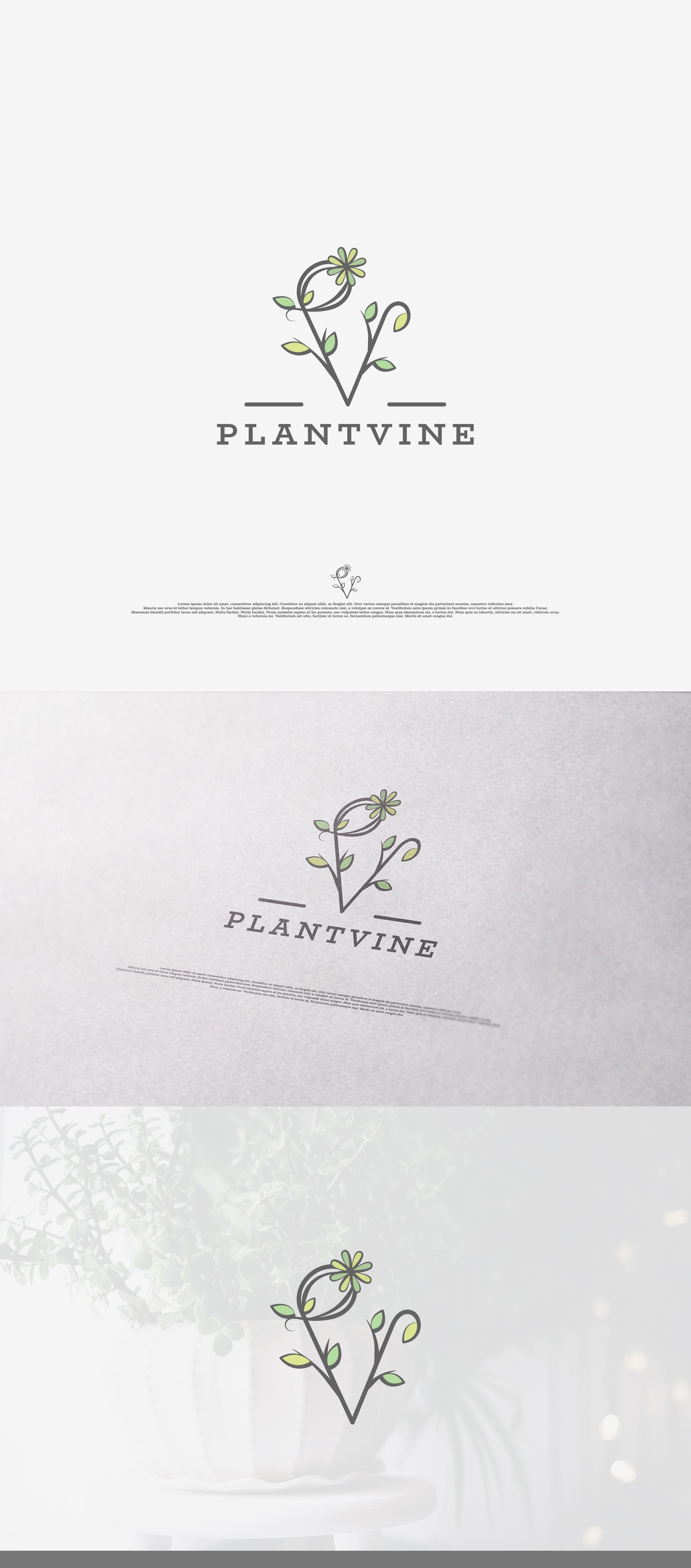 Vintage but Earthy logo for PlantVine