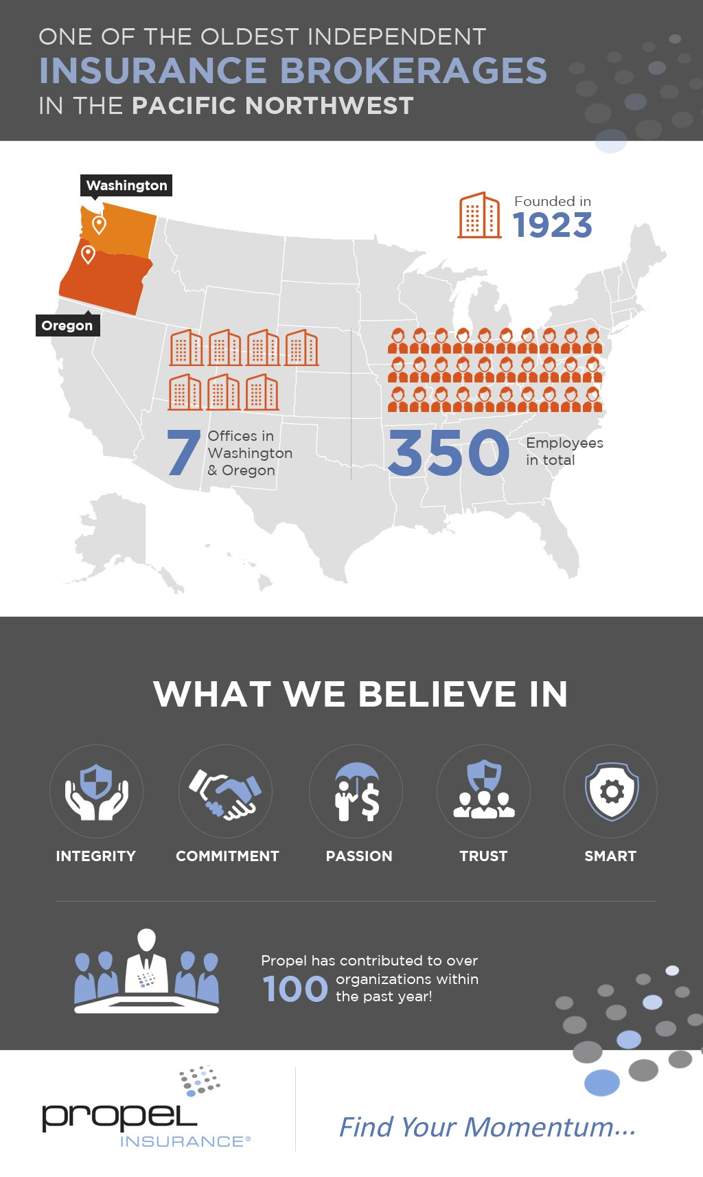 Insurance Company Overview Infographic for new website homepage
