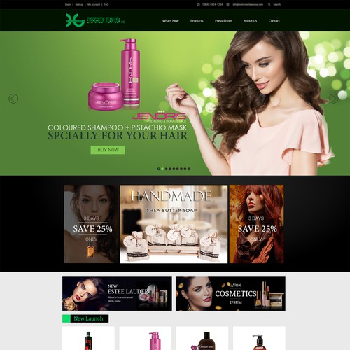 website design fro Evergreen Team USA