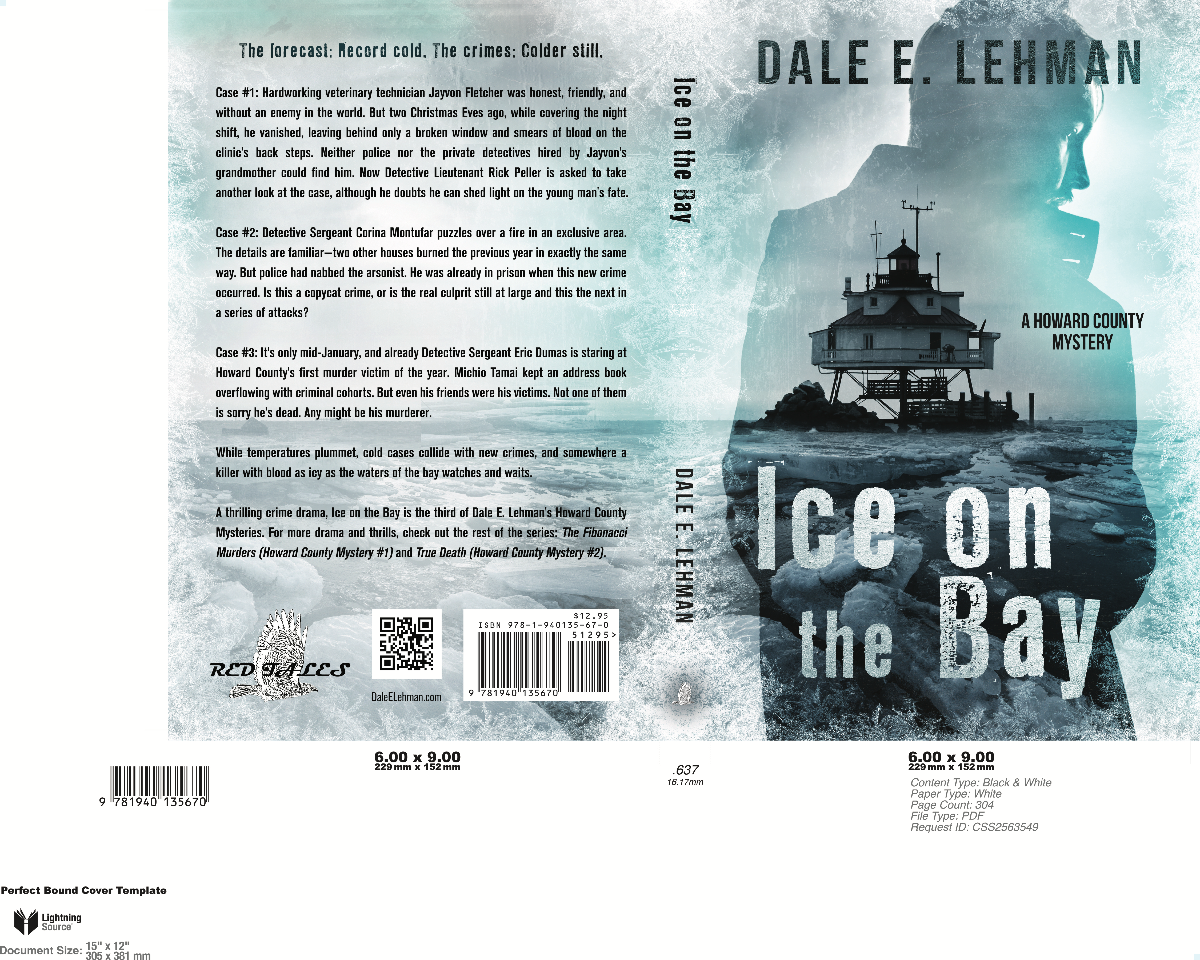 Ice on the Bay - Howard County Mystery Series #3