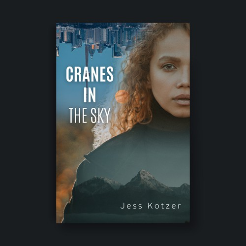 Book  cover for a fiction book