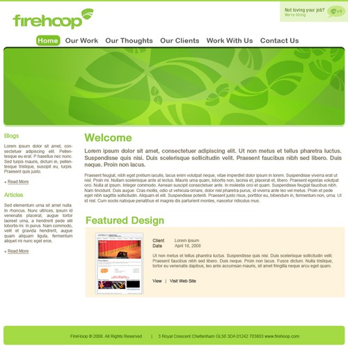 Web Designs for a Web Company