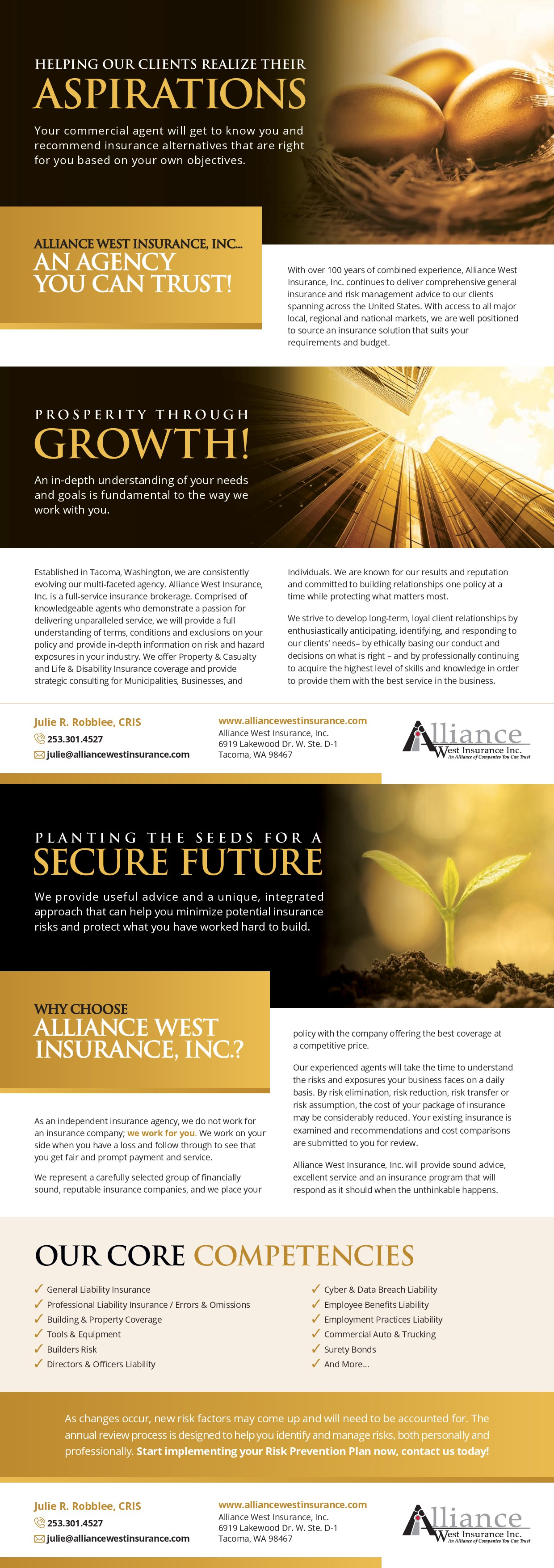 Commercial Insurance Flyer for High Net Worth Clients- Most of the work is done!