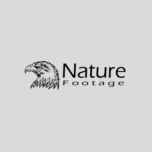 NatureFootage Logo Representing Water, Land and Sky.