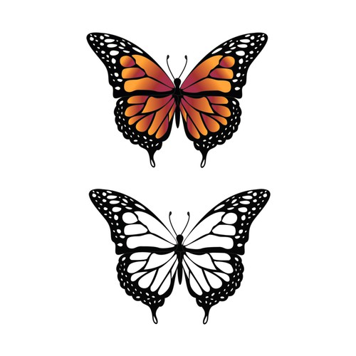 winning butterfly illustration