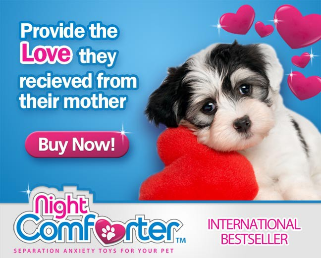 Help Night Comforter Puppy & Kitten Comforter Toy Series with a new banner ad