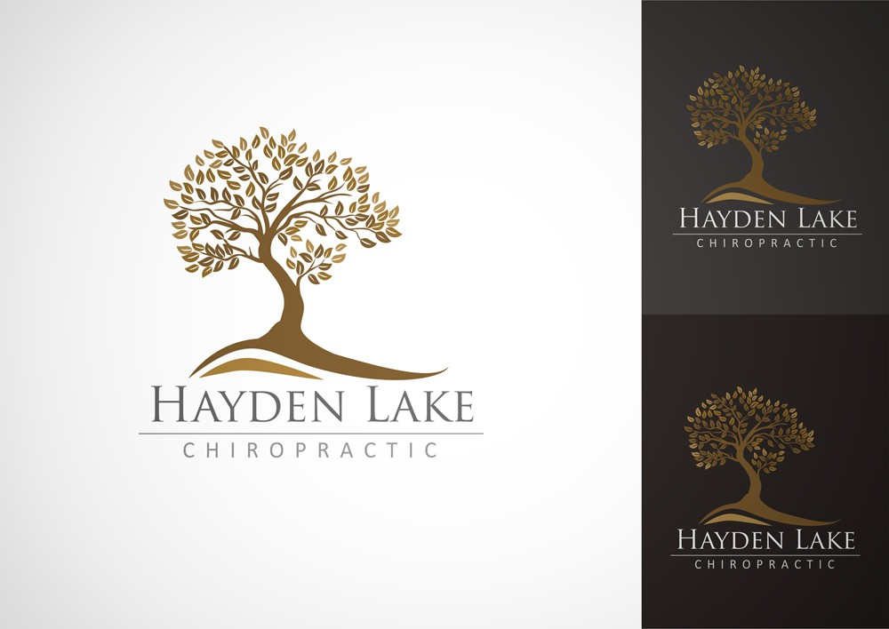 Help Hayden Lake Chiropractic with a new logo