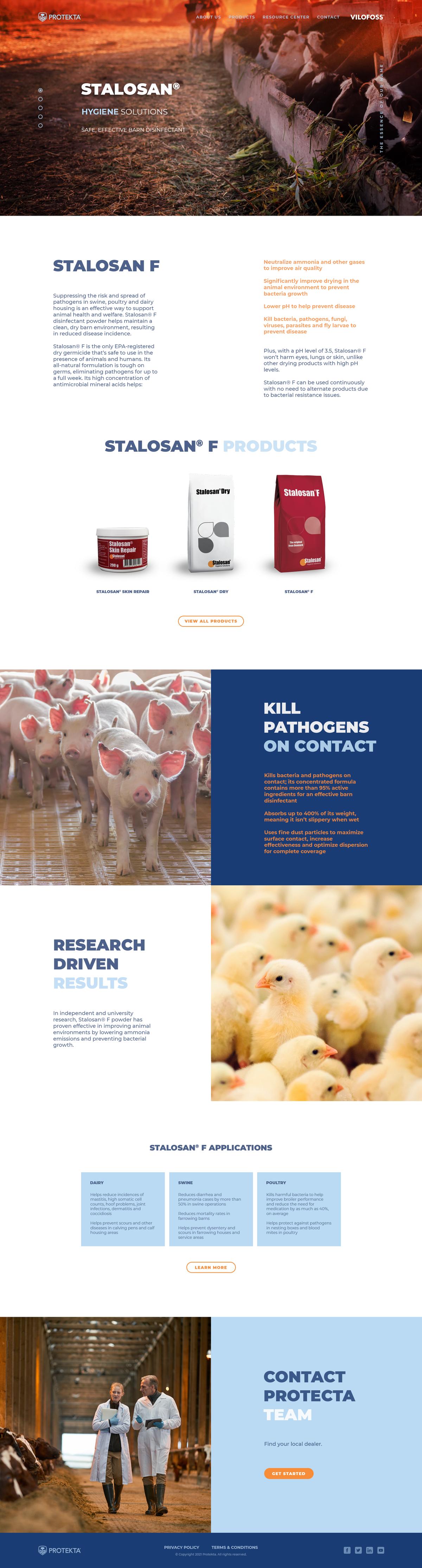 Web page design + expend brand guide (VILOFOSS)