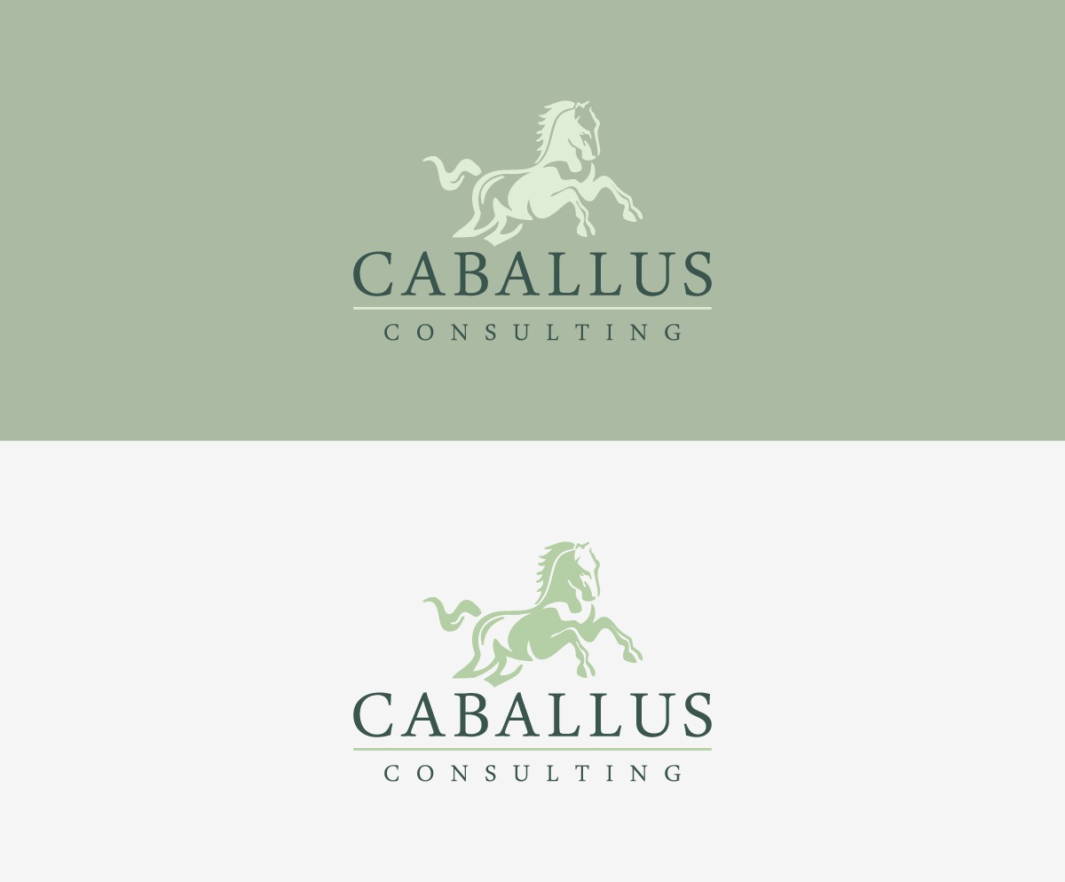 Caballus Consulting needs a new logo