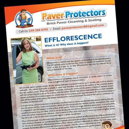 Create 2 informational sheets for Paver Protectors