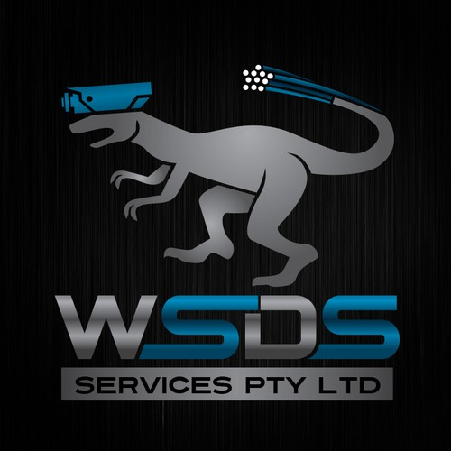 Create a stand out logo For WSDS Services