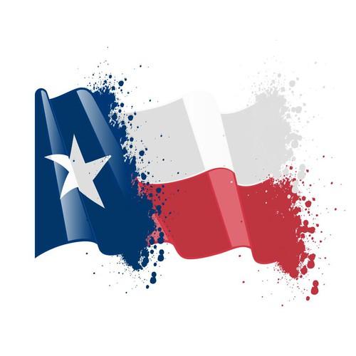 Flag logo 1