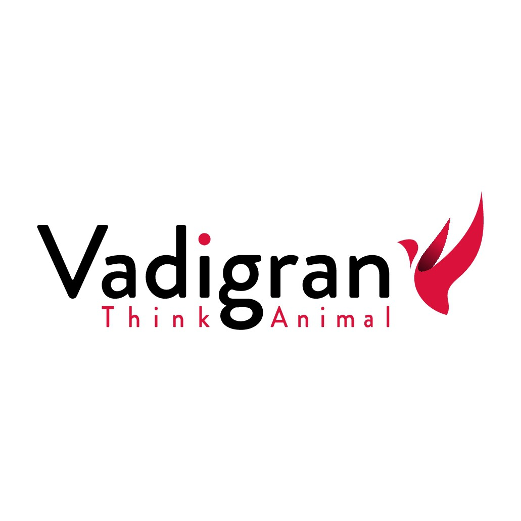 Vadigran, society active in the pet business is looking for an impacting new logo