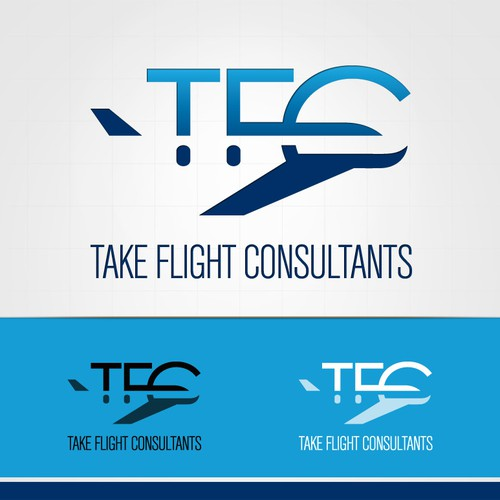 Help Take Flight Consultants with a new logo