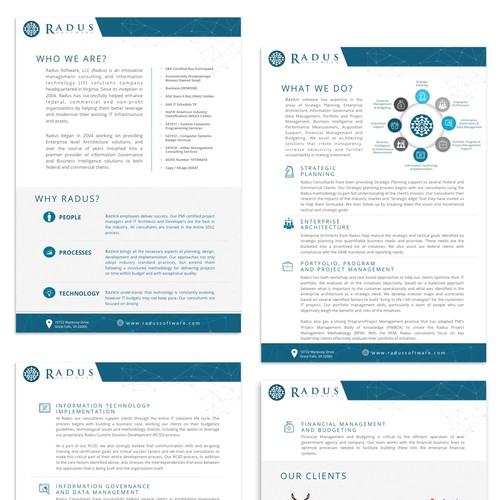 Radus - Software Consulting
