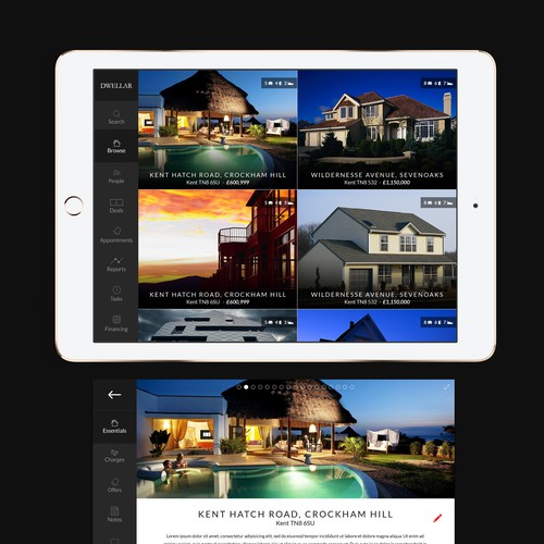 Design an iPad App UI that real estate estate agents will love.