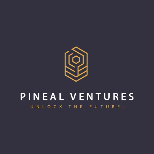 Logo for Venture Capital Firm
