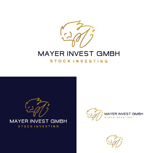 mayer invest