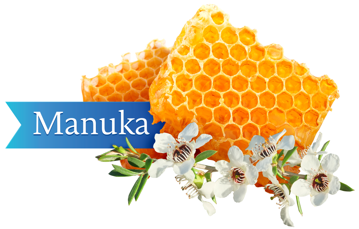Manuka Honey Nugget Bags