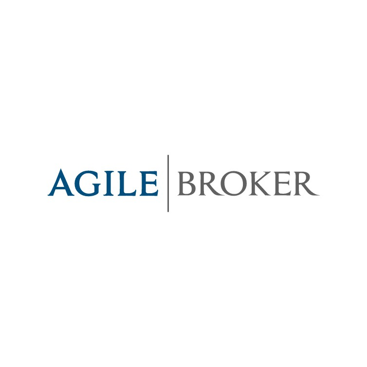 Logo Design for High Value Brokerage Company - supporting the US Federal Government