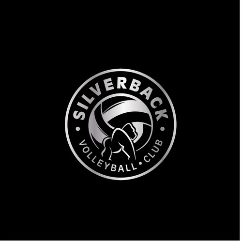 Logo concept for a volley ball club