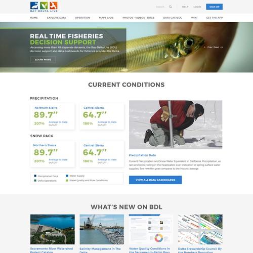 Innovative Homepage Design