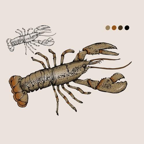 Realistic Lobster Illustration