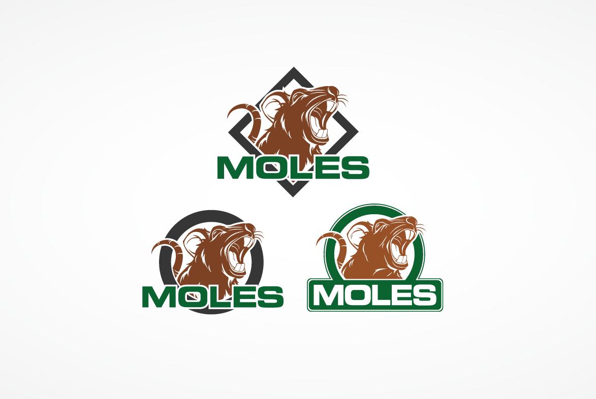 Create a Logo for an existing environmental company.