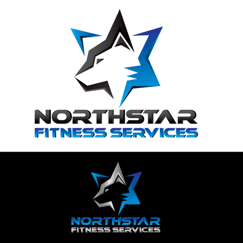 NFS Northstar Fitness Services needs its first logo for a NEW company!
