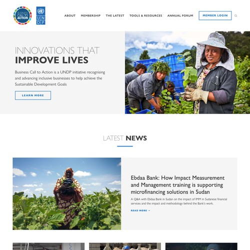 Business Call to Action | Website for a UNDP initiative