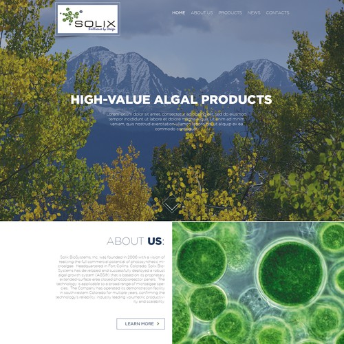 Web Design for Algal Products Company