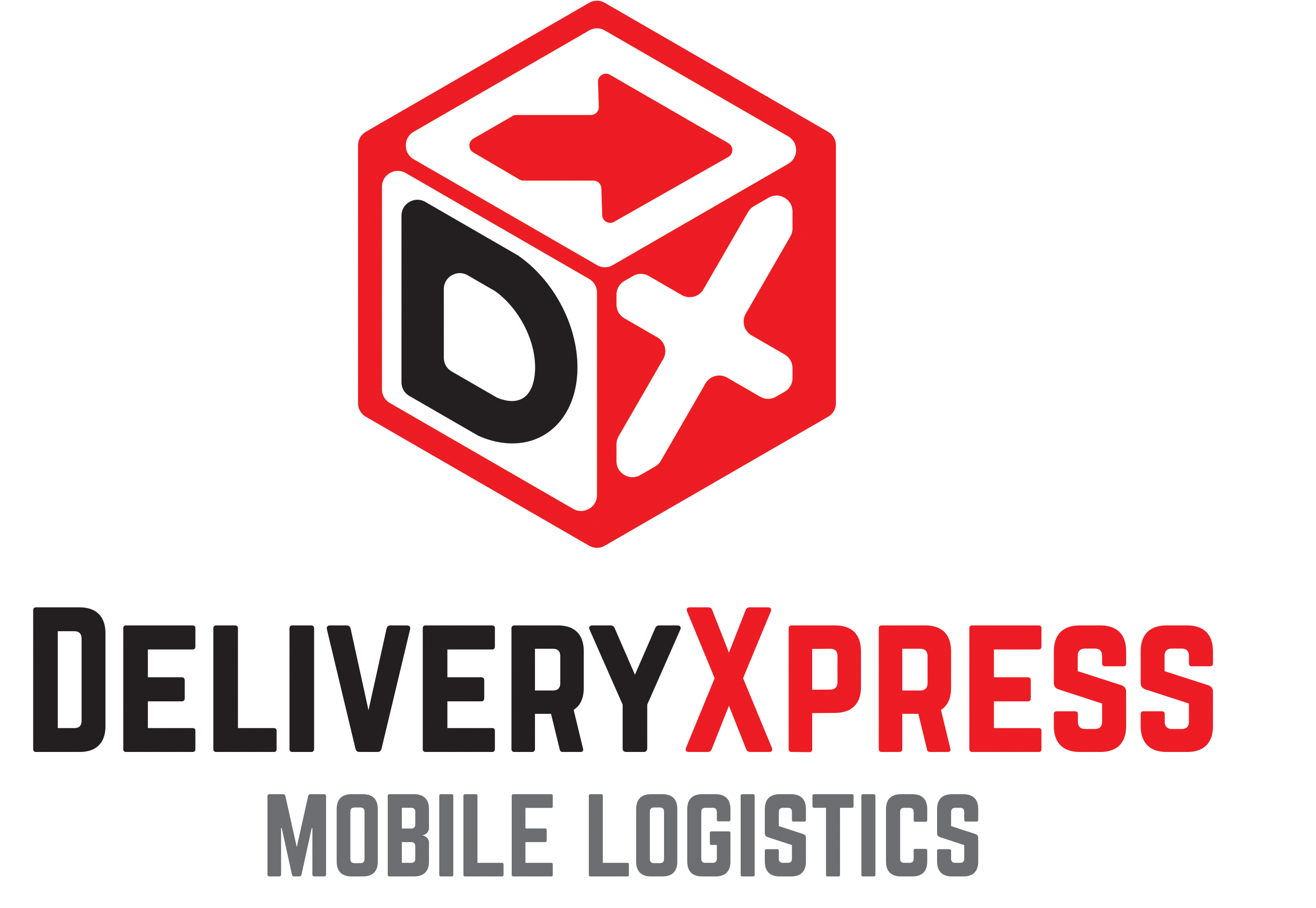 DeliveryXpress Logo7
