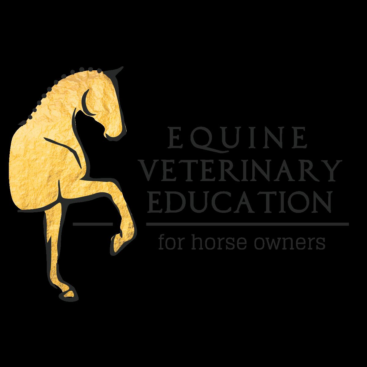 Revision Horse club logo