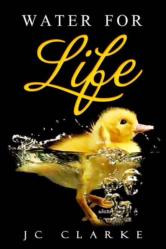 """Book cover for """"Water for Life"""" , already had great success with the logo - looking forward to this!"""