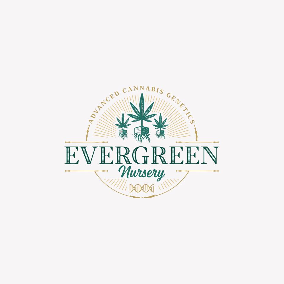 Evergreen Marijuana Nursery