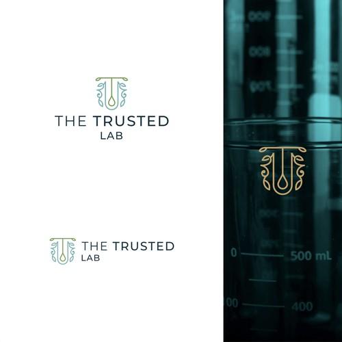 Elegant Logo concept