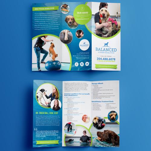 Brochure for Blanced Vet